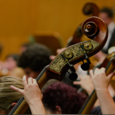 Contrabajo - Escuela Superior de Música Reina Sofía