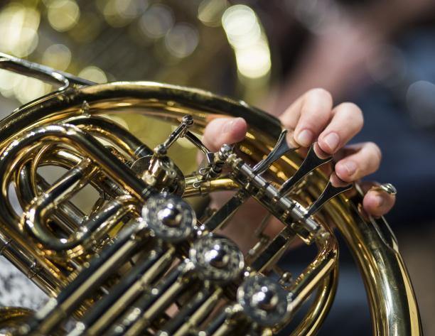 Concierto Académico: Trompa | Profesor Radovan Vlatkovic