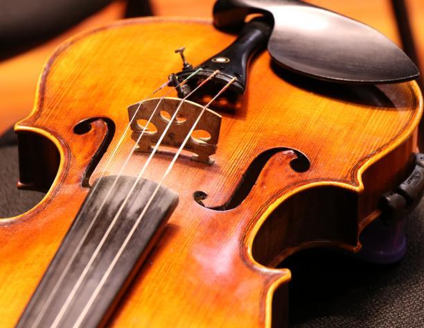 Concierto Académico: Viola | Profesora Diemut Poppen